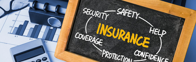 public and products liability insurance from GSI