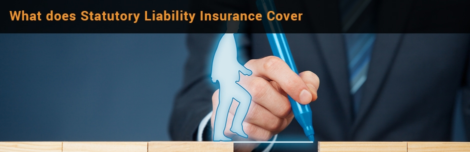 what is statutory liability insurance cover