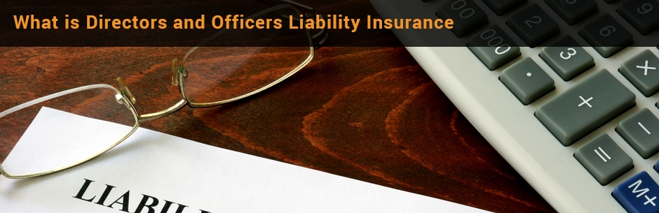 director and officer liability insurance